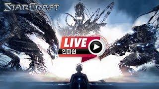 【 인피쉰 LIVE 】 빨무 빠른무한 스타 스타크래프트 팀플 ( 2019-06-09 일요일 )