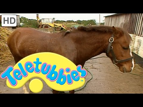 Teletubbies: Emily Washing the Pony - Full Episode