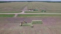 Can American Alfalfa Producers