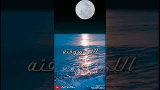 انت عمري   شيماء الشايب - حالة واتس