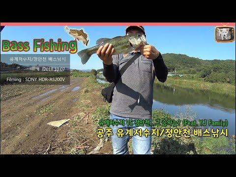 공주 유계저수지/정안천 배스낚시(유계저수지 VS 정안천... 그 승자는?) Feat. Y.J Family. Bass Fishing