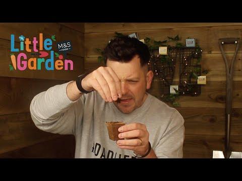 M&S   The Skinny Jean Gardener's Review of Little Garden Ep1