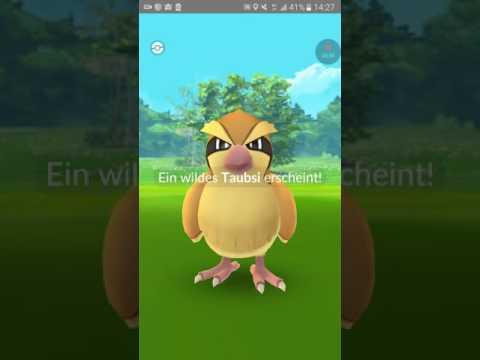 Pokemon go 15 Minuten nonstop 13.2.17 teil 1