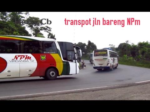 skil 2 bus Sumatra,Npm-Transpot melintas berhenti ditanjakan Wadon,