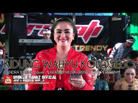 KIDUNG WAHYU KOLOSEBO (cover) CANDRA KIRANA - LARASATI MUSIK TRENDY | Live Perform