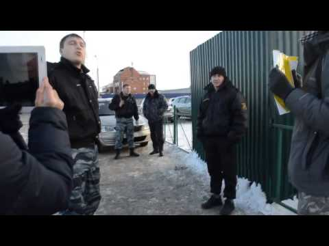 Пикеты защитников прав животных у дельфинария в Иркутске