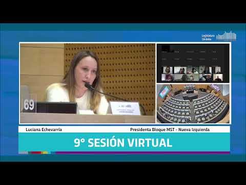 Novena Sesión Virtual - 142 Período Legislativo