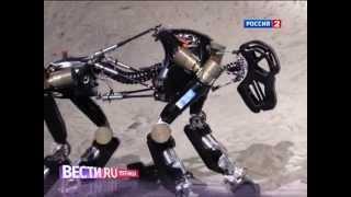 Робот-горилла создан в Германии