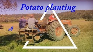 Potato planting - Φύτεμα Πατάτας πατέντα   Lamborghini cross 774   Dji osmo mobile, Dji phantom