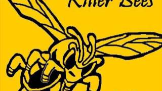 """Cool Down"" Killer Bees Reggae LIVE from Paris, FRA"
