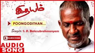Idhayam Tamil Movie Songs | Poongodithan Full Song | Murali | Heera | Ilayaraja | Music Master