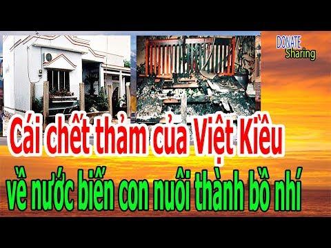 C,á,i ch,ế,t th,ả,m c,ủ,a Việt Kiều VỀ NƯỚC b,i,ế,n c,o,n n,u,ô,i th,à,nh b,ồ nh,í