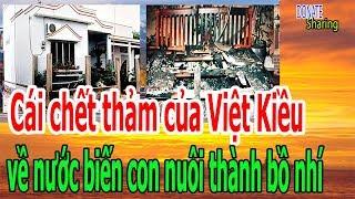 C,á,i ch,ế,t th,ả,m c,ủ,a Việt Kiều VỀ NƯỚC b,i,ế,n c,o,n n,u,ô,i th,à,nh b,ồ nh,í - Donate Sharing