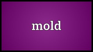Mold Meaning