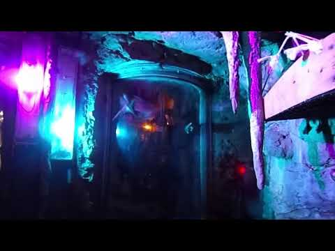 Staten Island 360-video: Hanging out in the Zoo's bat cave