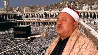 ماشى فى نور الله - الشيخ محمد الطوخى