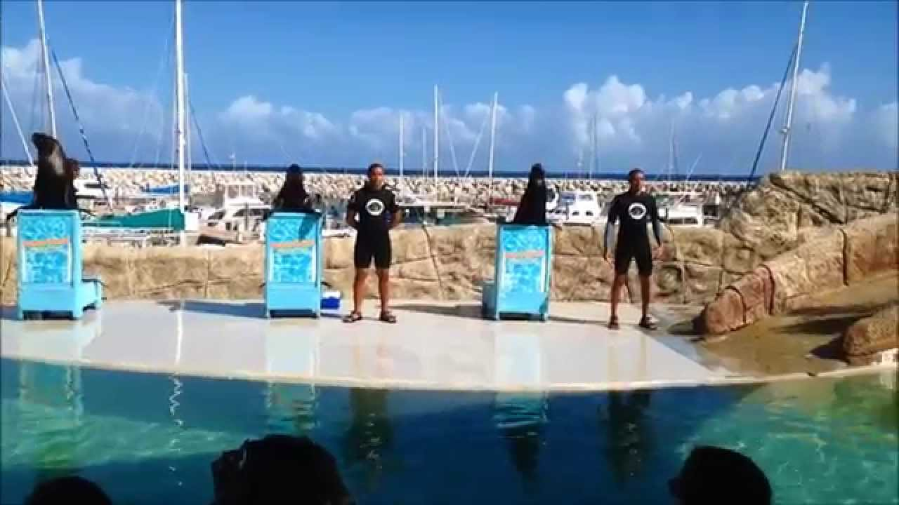 Ocean World Dominican Republic