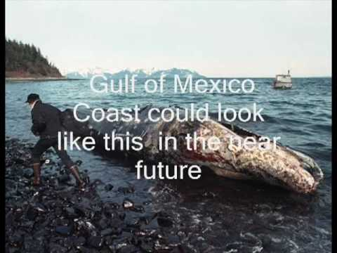 Why NO oil containment efforts? BP Fails Booming School 101 - Gulf Oil Spill.