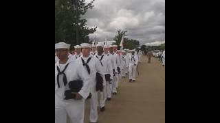 SEALs Cadence