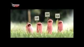 kurtçuklar-Komik Animasyon