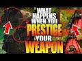 CoD Black Ops 4: What Happens When You Prestige Your Gun - Where To Find Your Clan Tag And Counter