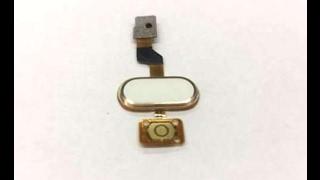 Не работает сенсорная кнопка Home в Meizu (Мейзу)