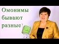 Грамматические омонимы русского языка