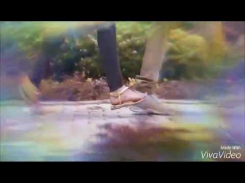 Baduga cut song(3)