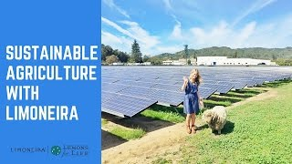 Sustainable Agriculture | Limoneira with Megan Roosevelt, RDN