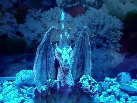 Fish Tank Decoration Dragon Youtube