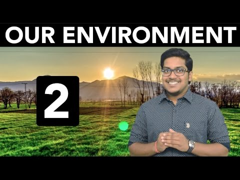 Natural Resources: Our Environment (Part 2)