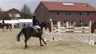 Kumru Say & Snoopnose (Vechta 12.04.2017 , 130 cm)