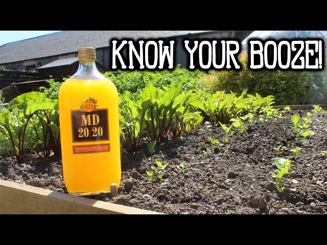 KNOW YOUR BOOZE - MD 20/20
