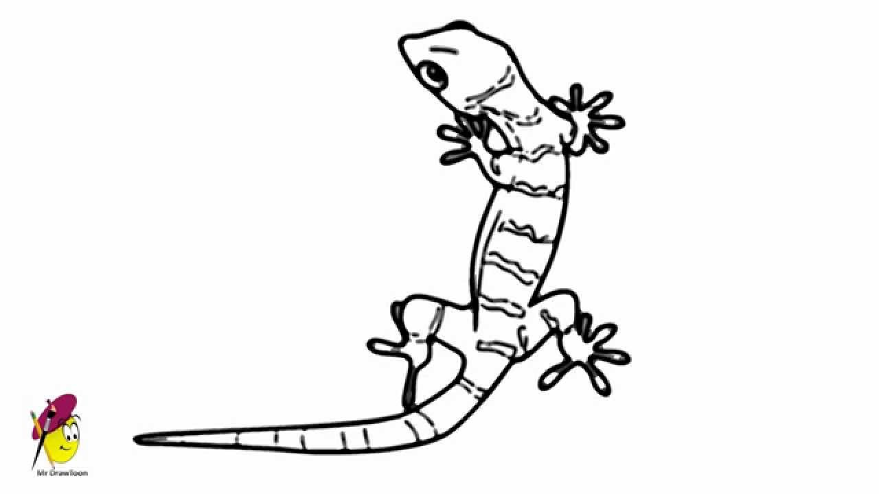 Uncategorized Lizard Drawings lizard how to draw a youtube