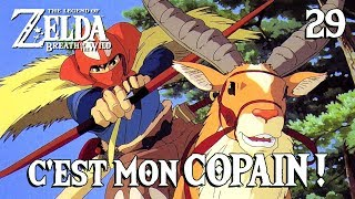 C'EST MON COPAIN ! (Zelda Breath of the Wild - 29)