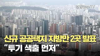 """신규 공공택지 지방만 2곳 발표…""""투기 색출 …"""