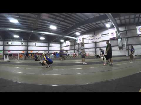 Beach Party 2015 Flyball Tournament Timelapse