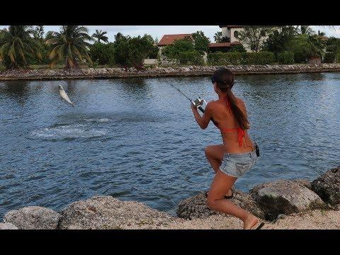 BIG TARPON in the Cayman Islands