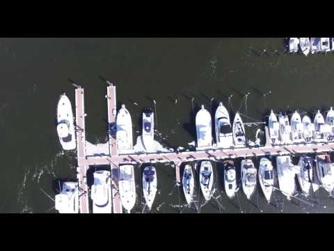 Aerial Footage Of Fish Kill In Atlantic Highlands, August 28th 2016