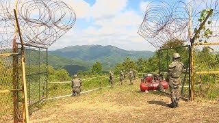 Границу между Северной и Южной Кореей начали разминировать