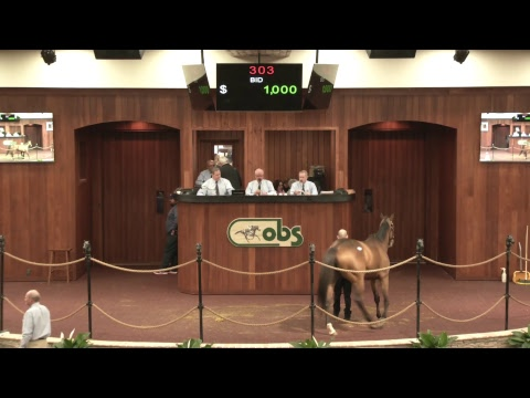 OBS January 2019  Mixed Sale, Day 1 (HD)