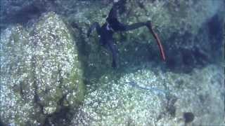 Ψαροντούφεκο Σίφνος 2012 (Spearfishing in Sifnos).wmv