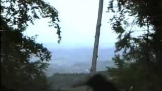 Tesanj 1993-1994 (Napad na brdo Zmajevac...