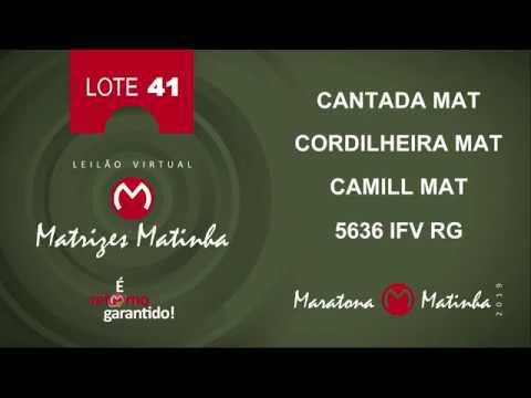LOTE 41 Matrizes Matinha 2019