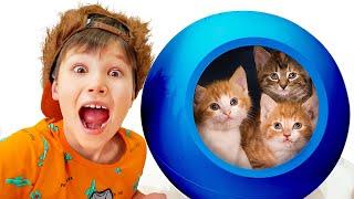 Katy y sus nuevas gatitas