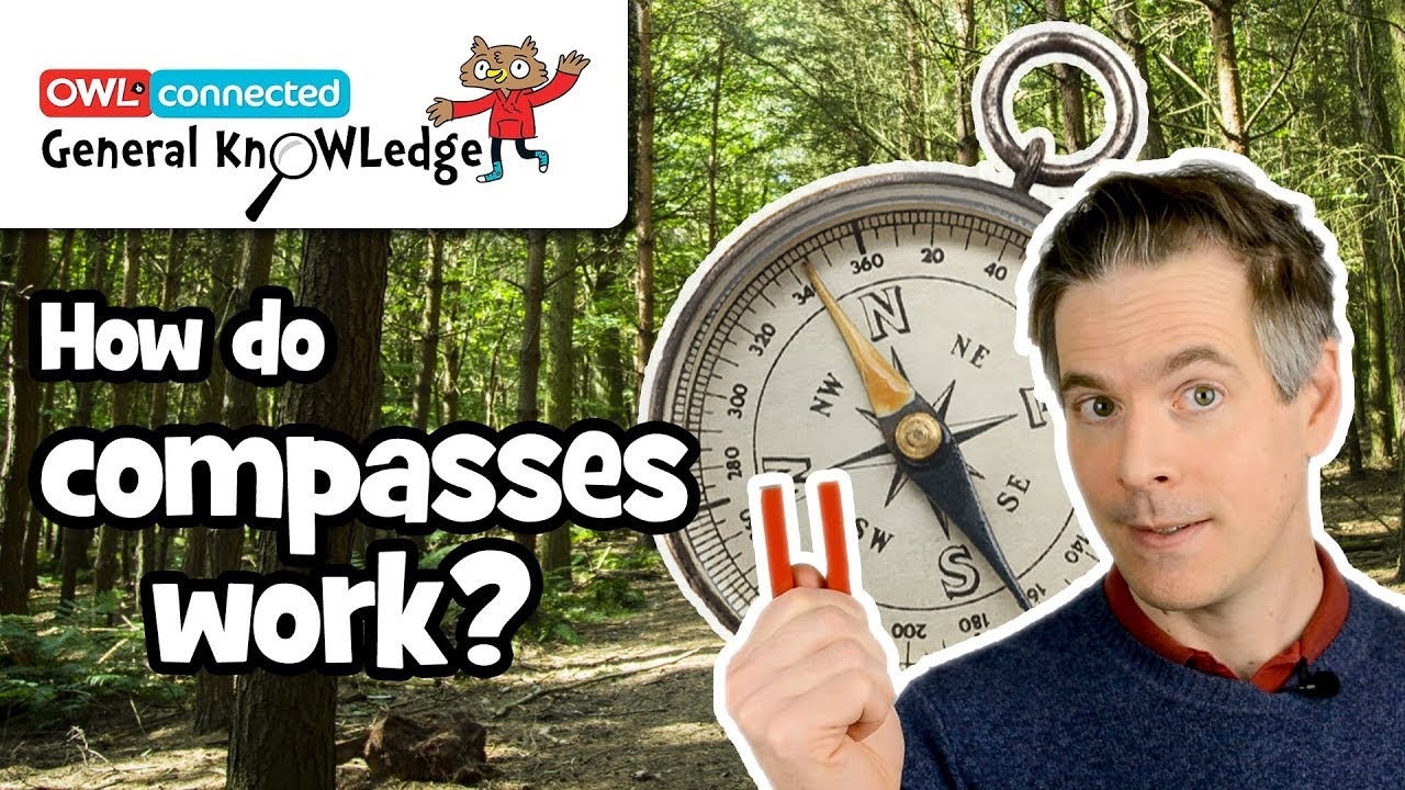 Download How does a compass work?