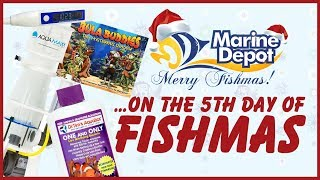 Fifth Day of Fishmas 2018 ❄ DrTim's 15% OFF + GIVEAWAY ❄ AquaMaxx CO-1 & CO-2 Skimmers 25% OFF