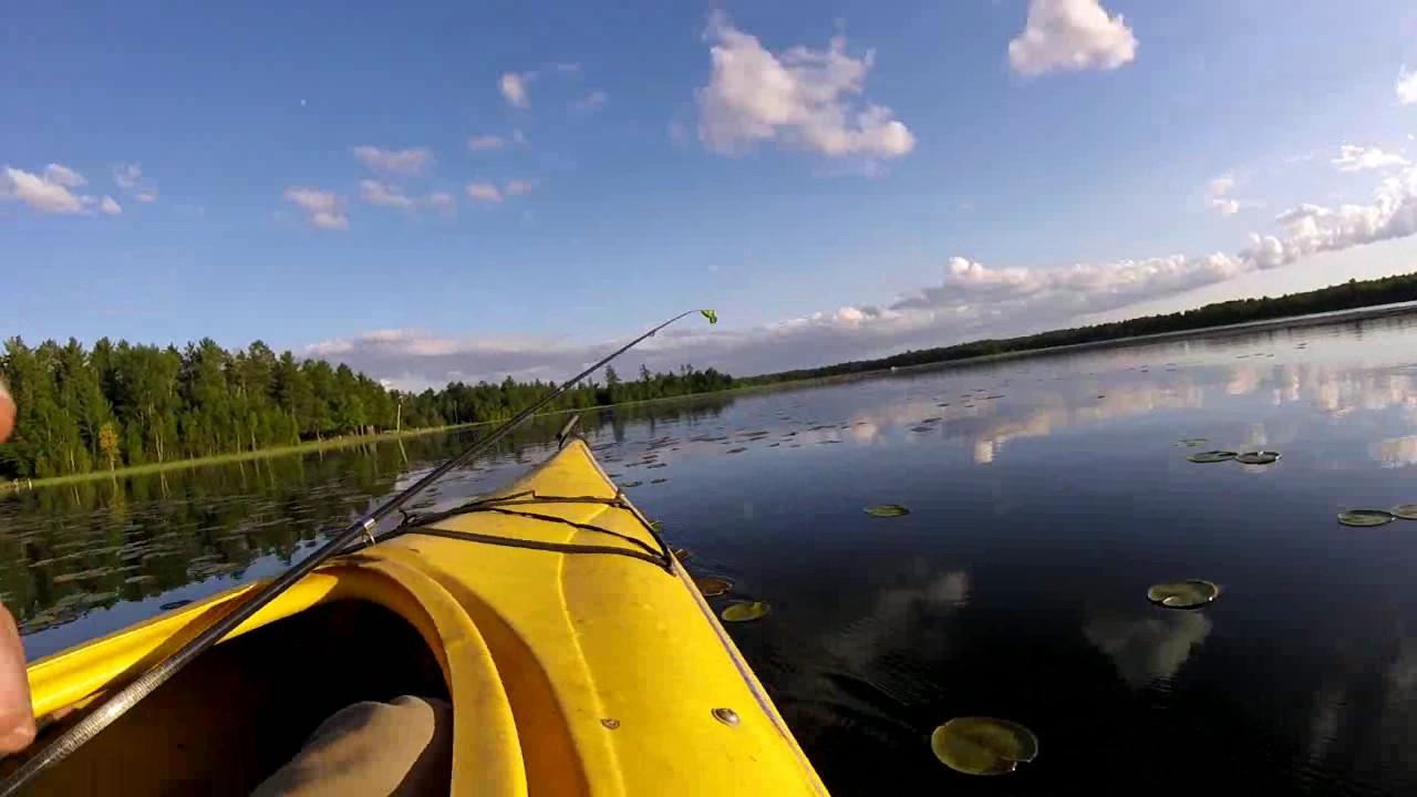 Beautiful GoPro Fishing & Underwater Scenes - YouTube