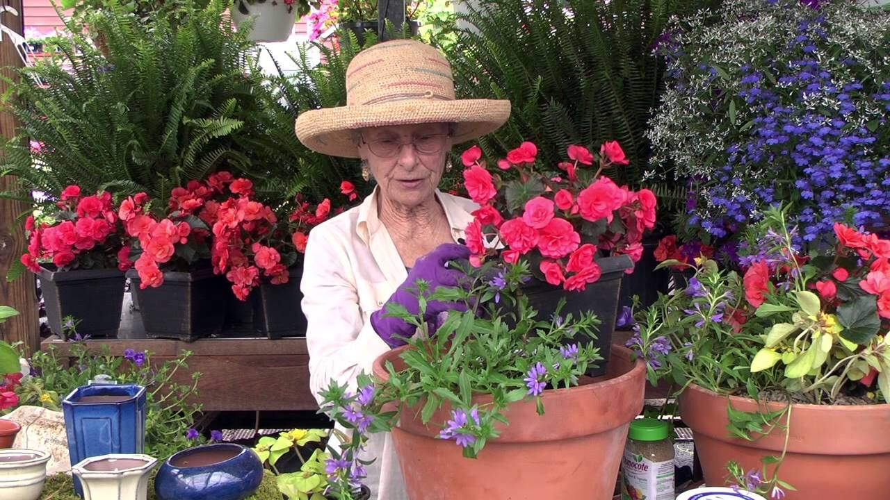 How to Plant a Container Garden YouTube