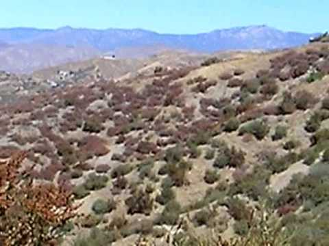 Hiking Through the Chaparral Biome, California - YouTube